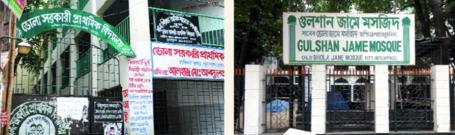 ভোলা গ্রামের শেষ দুই নিদর্শন ভোলা সরকারী প্রাথমিক বিদ্যালয় এবং গুলশান জামে মসজিদ